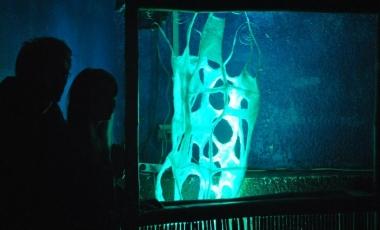 2011 Electro Contest-19