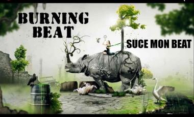 2013-11-burning-beat-ver