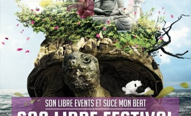 2014-festival-son-libre-001