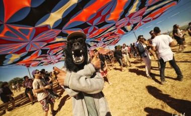 Son Libre Festival 3_120